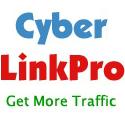 1307Cyber Link Pro