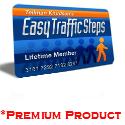 4319Easy Traffic Steps