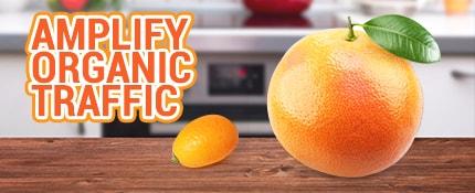 1 small orange and 1 big orange